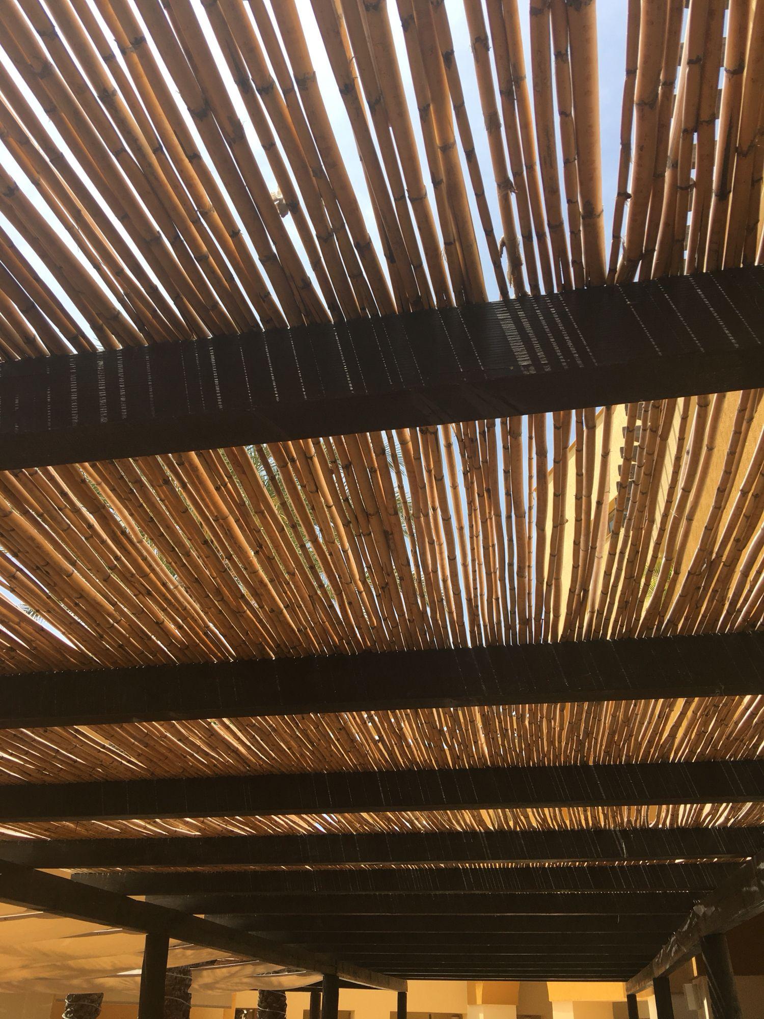 Bamboo Ceiling Pergola Cabo Bamboo Ceiling Pergola Ceiling