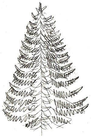 Draw a christmas tree in pencil and color it