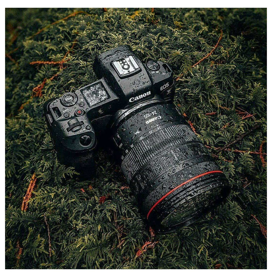 Secure Fast Private Web Browser With Adblocker Brave Browser Canon Camera Wallpaper Canoncamera In 2021 Canon Camera Photography Canon Camera Camera Wallpaper