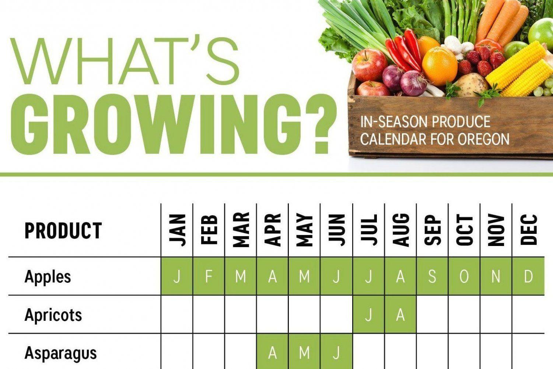 What S In Season Oregon Produce Calendar Infographic Vegetable Growing Vegetable Growing Vege In 2020 In Season Produce When To Plant Vegetables Fruit In Season