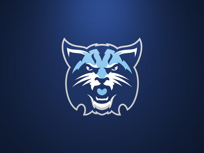 Helsinki Lynx 2  MascotSports design  Logo basketball