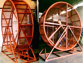 Centrifugal Force And Human Hamster Wheels Hamster Wheel Physics And Mathematics Centrifugal Force