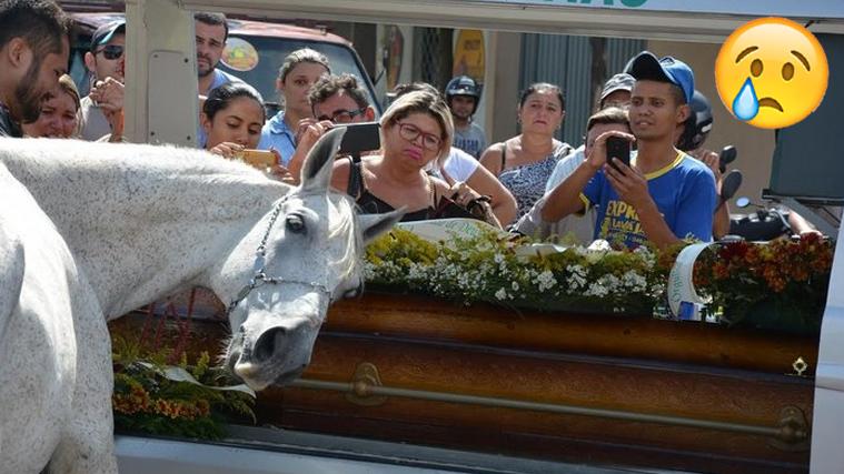 """Wagner Figueiredo de Lima und sein Pferd """"Sereno"""" waren besten Freunde – bis sie ein tragischer Autounfall für immer trennen sollte. Lima's Bruder Wando wusste, dass sein Bruder sein Pferd über alles liebte und es ihm die Welt bedeuteten würde, noch einmal Abschied nehmen zu können. Deswegen entschied er sich dazu, Sereno …"""