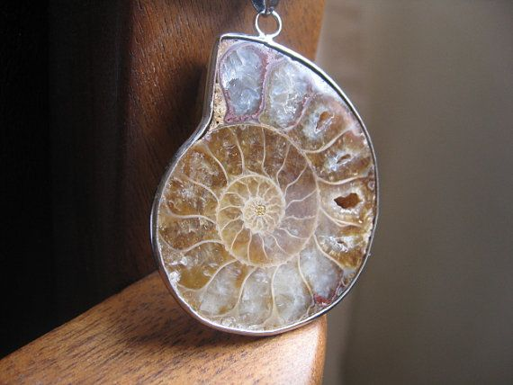 mens ammonite necklace in sterling silver and black by Splurge, $40.00