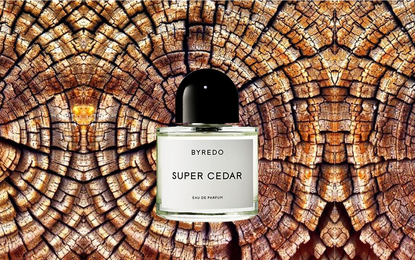 BYREDO Super Cedar ist ein außergewöhnlicher Duft mit Holzakkorden. Der Duft der Zeder ist einer der markantesten Gerüche, die wir leicht wieder erkennen. #byredo #beauty #meister_parfumerie #hamburg #cedar
