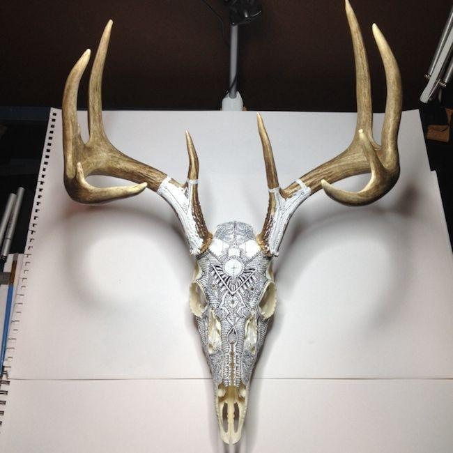 Striking Animal Skull Art by Peter Deligdisch   Marvelous