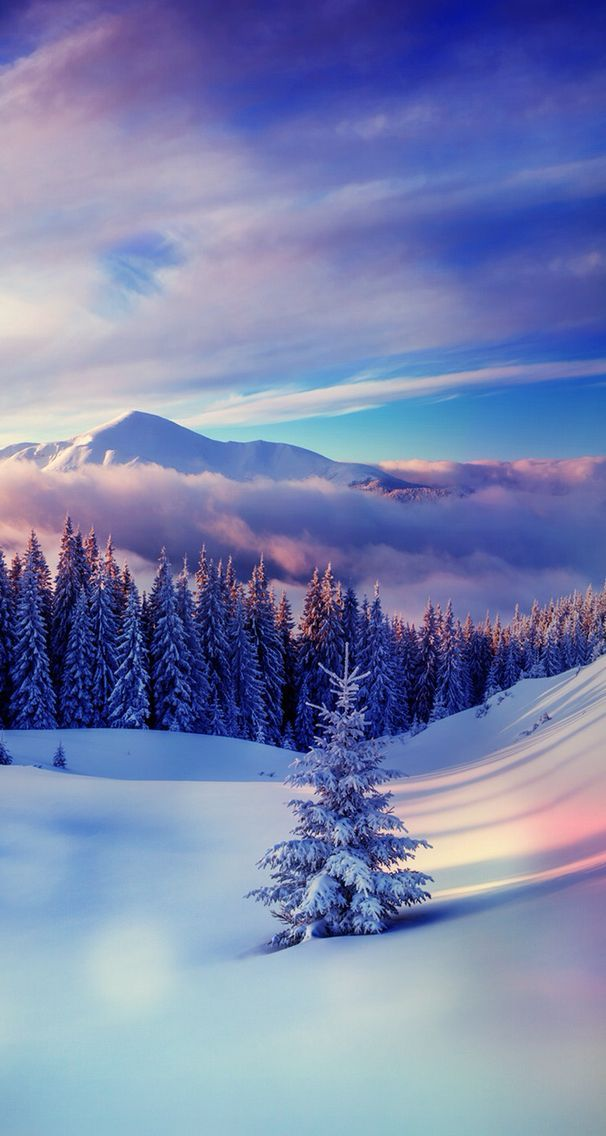 Winter Wallpaper - #paisaje #Wallpaper #winter #winterwallpaper