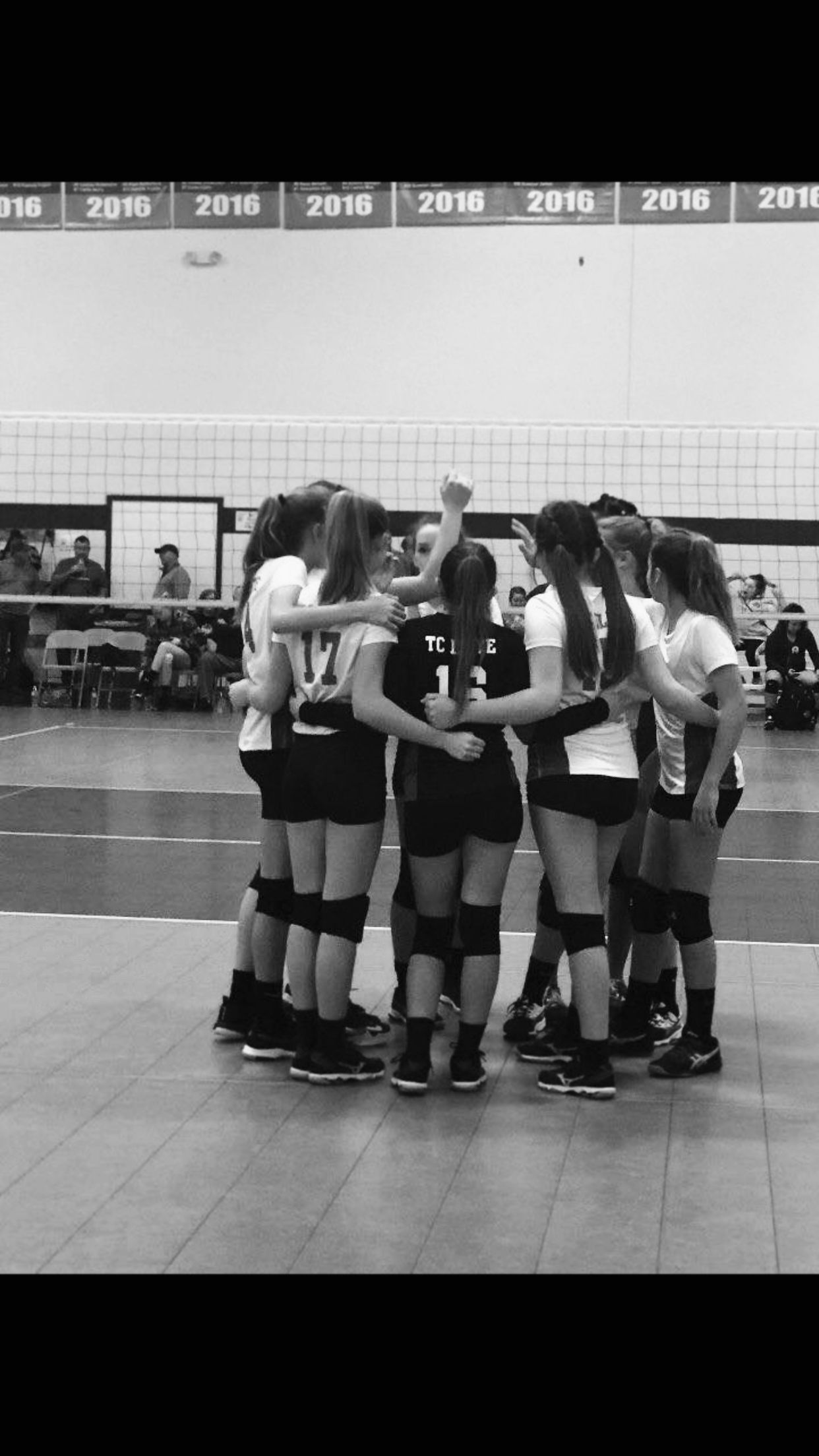 Pin By Haley Fadul On K I S S M Y A C E In 2020 Volleyball Pictures Volleyball Photos Volleyball Team