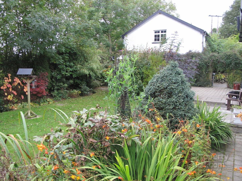 83 Belfast Road Newtownabbey Ballyclare Garden Small Garden Design Garden Design Small Garden