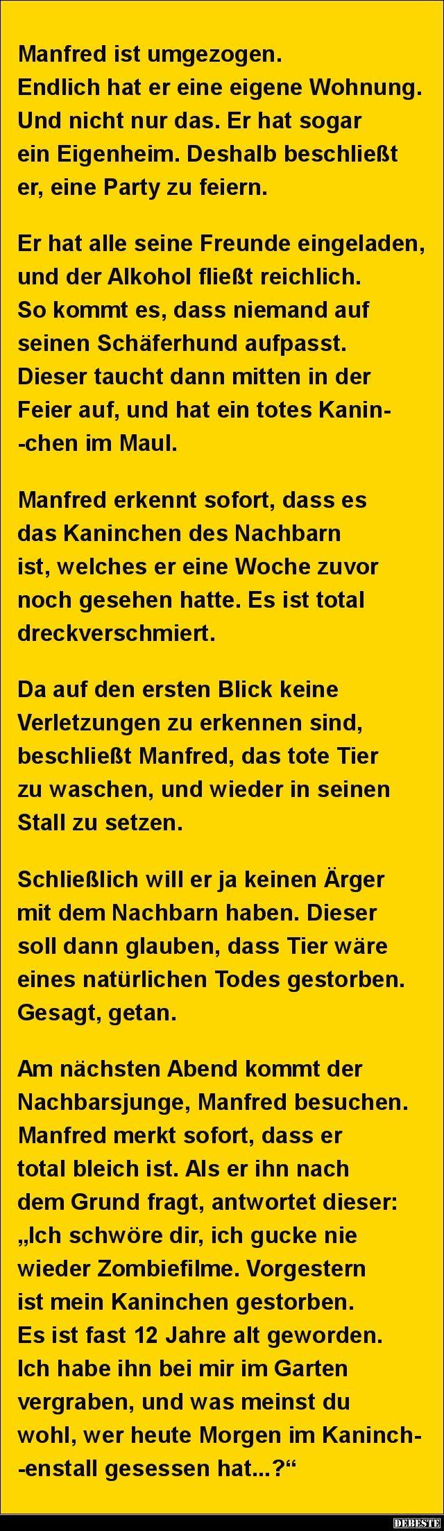 Manfred Ist Umgezogen Endlich Hat Er Eine Eigene Wohnung Mit Bildern Witze Geschichte Witze Lustige Spruche