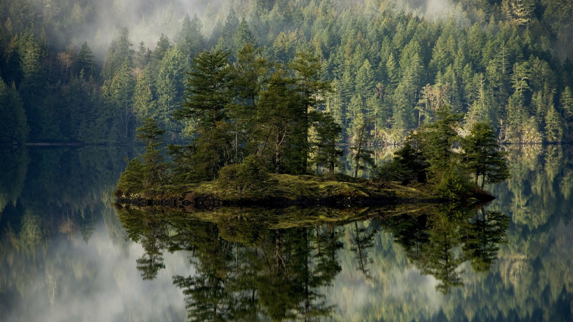 Wallpaper Mirror Reflection Island Forest Fir Tree Amazing 1920x1080
