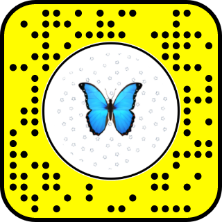 Snap To Unlock Snapchat Snapchat Filters Snapchat Filter Codes Snapchat