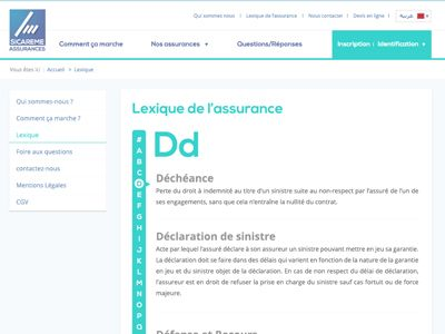 Insurance Glossary Web Layout Glossaire Et Sinistre