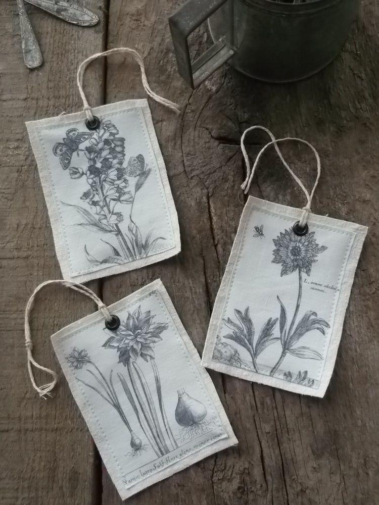 Image of Lot de 3 étiquettes Botaniques
