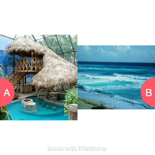 swimming pool or the ocean Click here to vote @ http://getwishboneapp.com/share/2117176