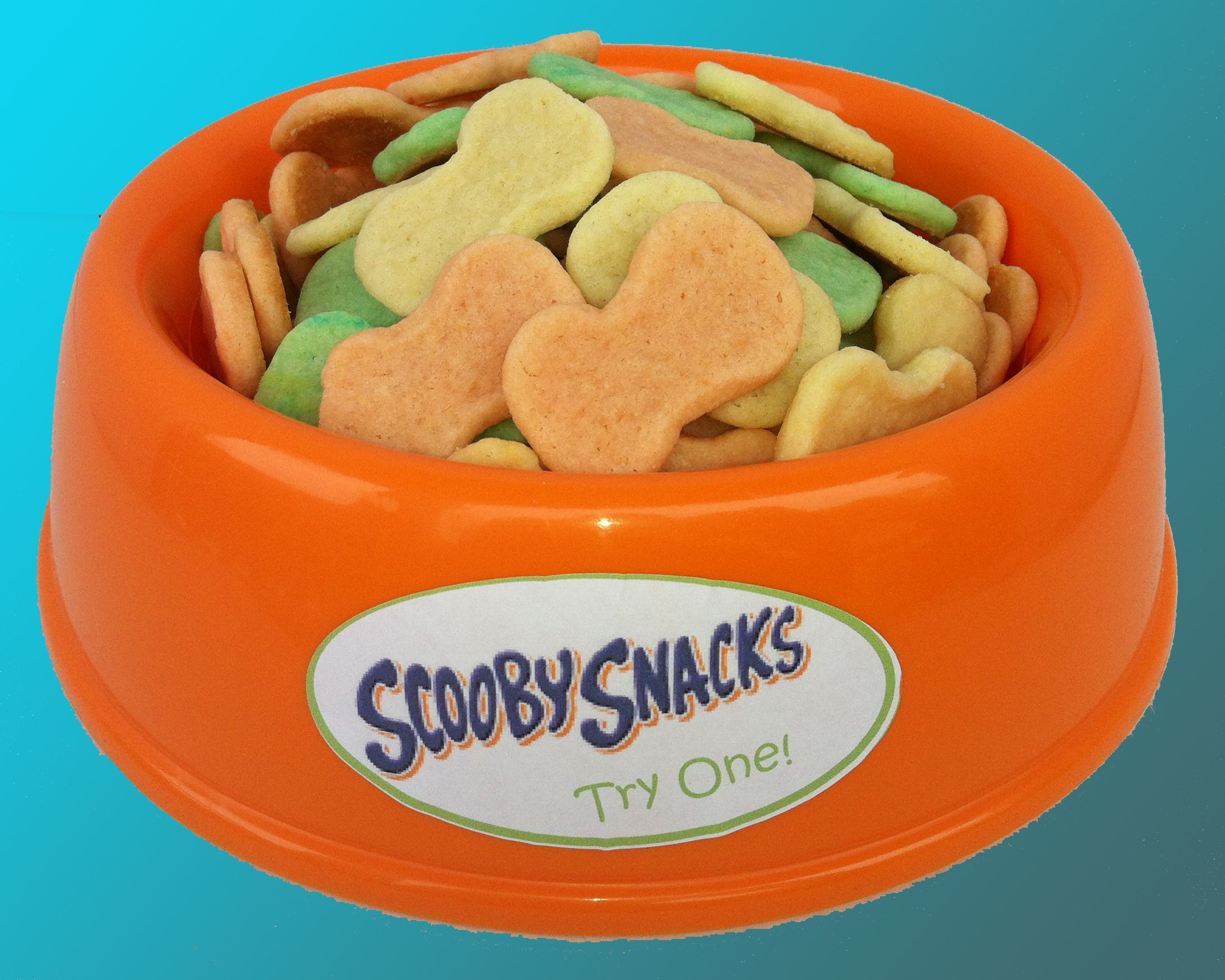 Dog Bone Shaped Sugar Cookies In A Dog Dish The Perfect