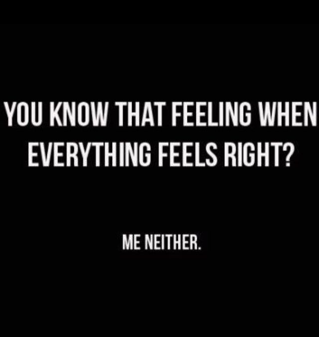 You Know That Feeling When Everything Feels Right Me Neither Life