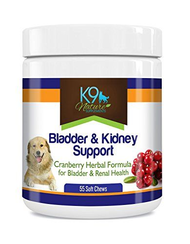 Bladder Kidney Support For Dogs Natural Cranberry Supplement For Urinary Strength Renal Health 55 Soft Chews Kidney Supplements Cranberry Supplements Bladder