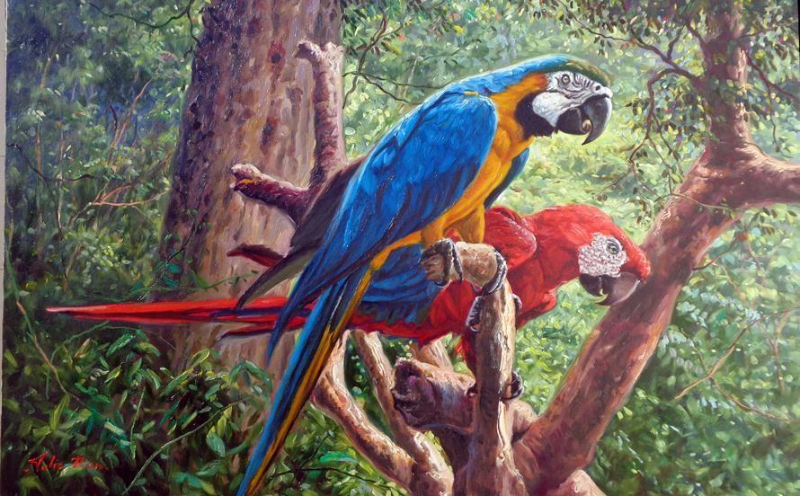 """Tulio Dias   """"Double Macaws""""   55x85-Oléo sobre tela-2015     ------------------------------------------------------------------------..."""