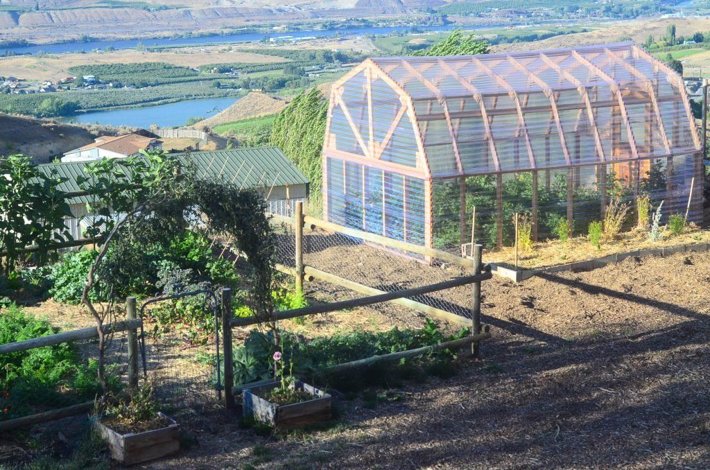 How To Build A Greenhouse In 2020 Backyard Greenhouse Build A Greenhouse Best Greenhouse