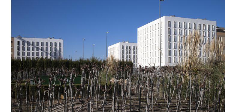 Estudio de Arquitectura Javier Terrados, Sevilla, España