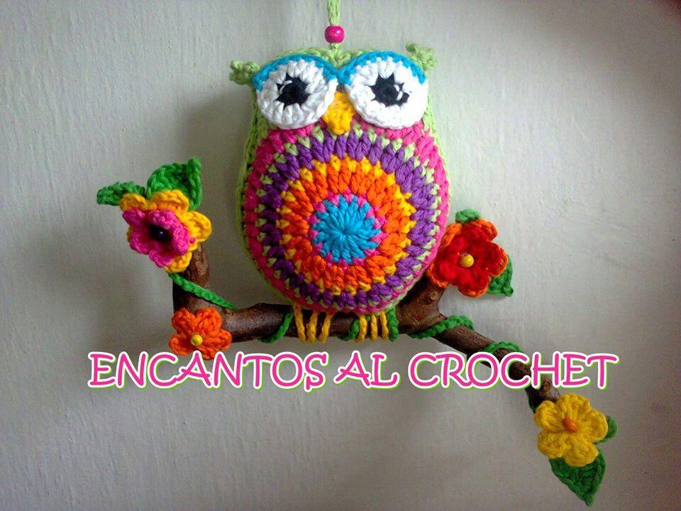 Pin de carlovikilupe en manualidades a crochet   Pinterest ...