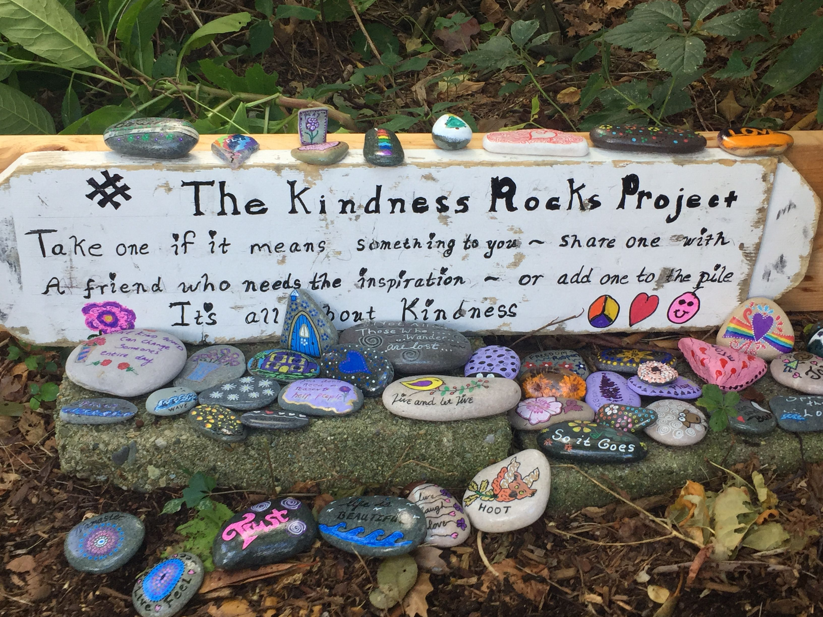 Landscape Rock Quote : This is the sagamore beach ma kindness rocks project