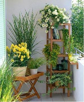 Small Balcony Plants Ideas 2