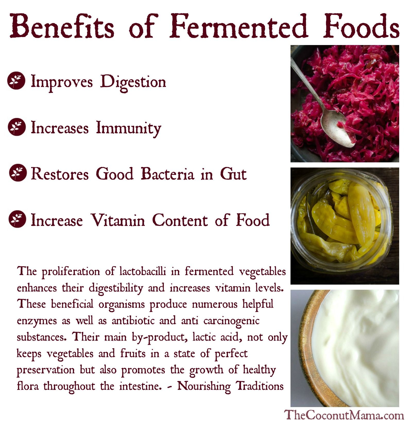 Benefits of Fermented Foods (With images) Fermented
