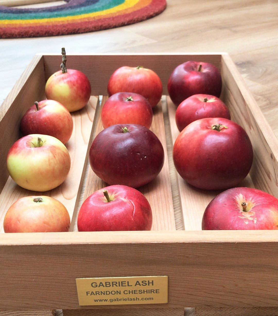 That's another tray of apples harvested and ready for storage until they get used in an apple pie or simply with our lunches .