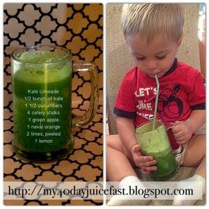 My 40 Day Juice Fast: Kale Limeade, Kid Approved!1/2 bunch kale 1 1/2 cucumbers, peeled 4 celery sticks 1 green apple 1 naval orange, peeled 2 limes, peeled 1 lemon, peeled