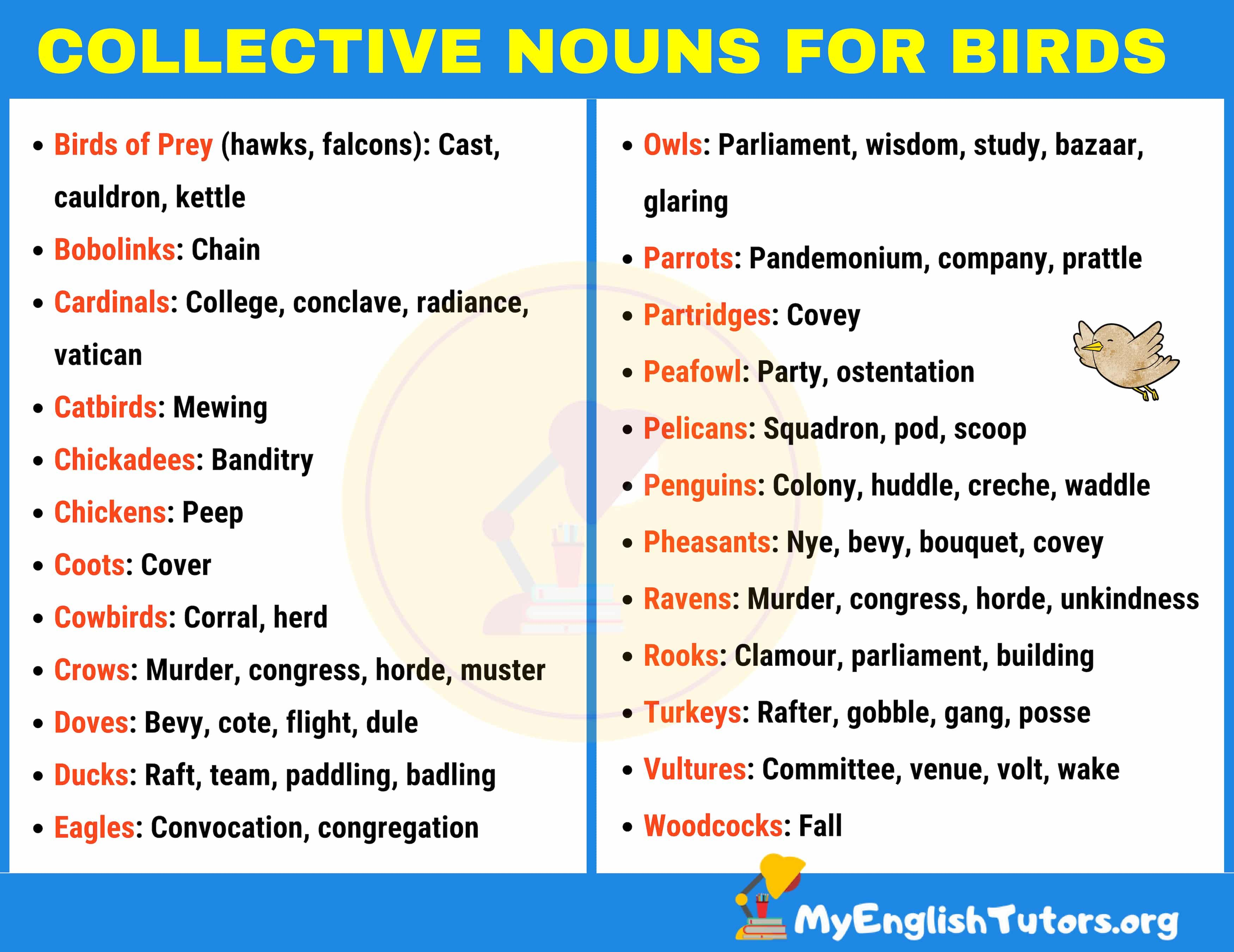 Collective Nouns For Birds In English