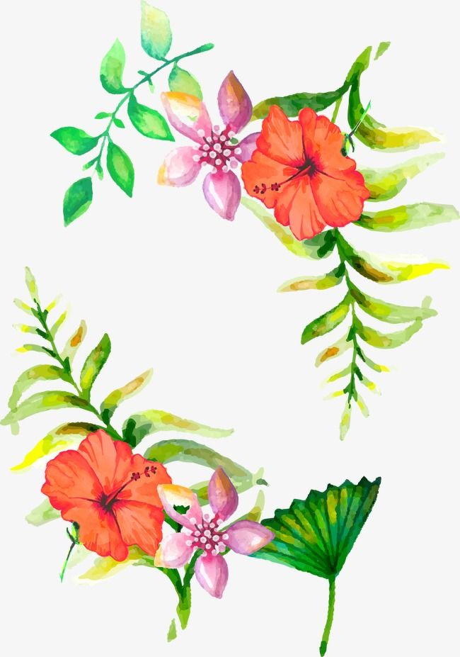 Watercolor Flowers Border Watercolor Vector Border Vector