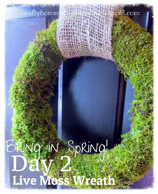 { The Crafty Homeschool Mama }: Bring in Spring! Day 2: Make a Live Moss Wreath