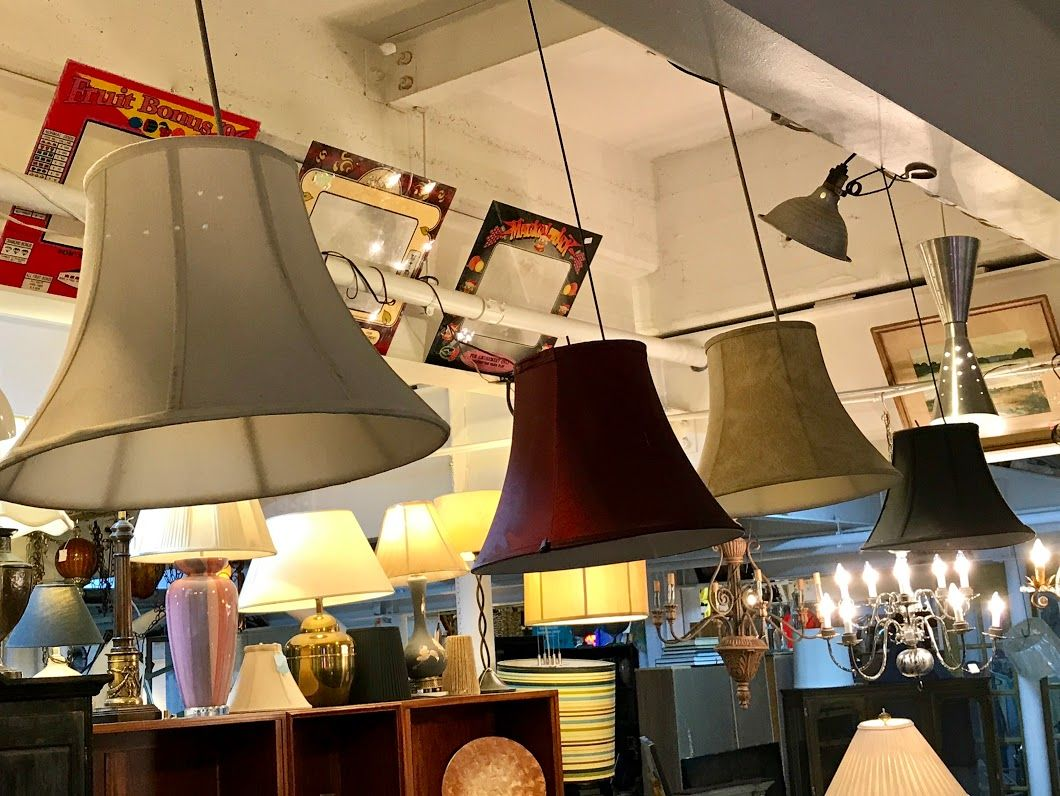 Lampshades do you need to get your shade on we have plenty to lampshades do you need to get your shade on we have plenty to choose aloadofball Gallery