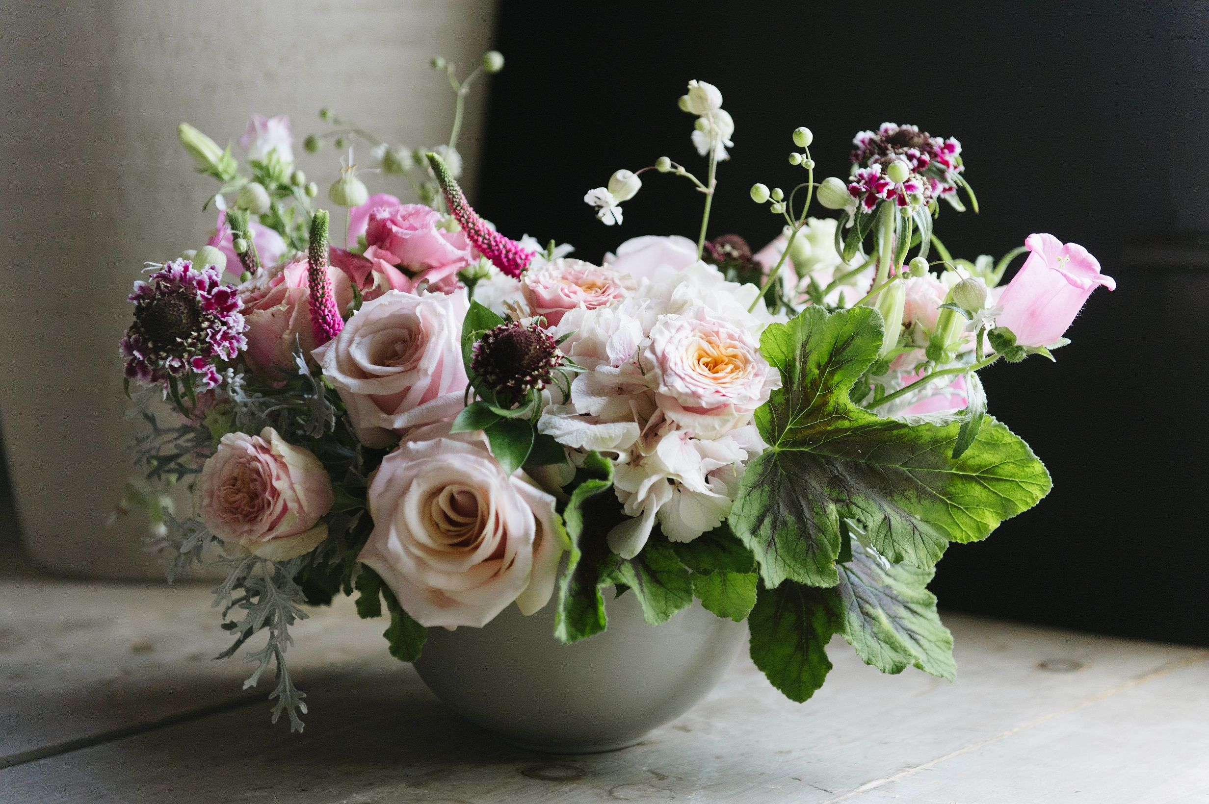 The Pristine Beauty Of Blush Garden Roses Garden Lace By