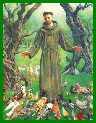 27 Best St Francis Of Assisi Images Catholic Saints Catholic