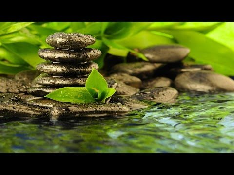 Zen Meditation Music With Water Sound Indian Relaxing Music Therapy