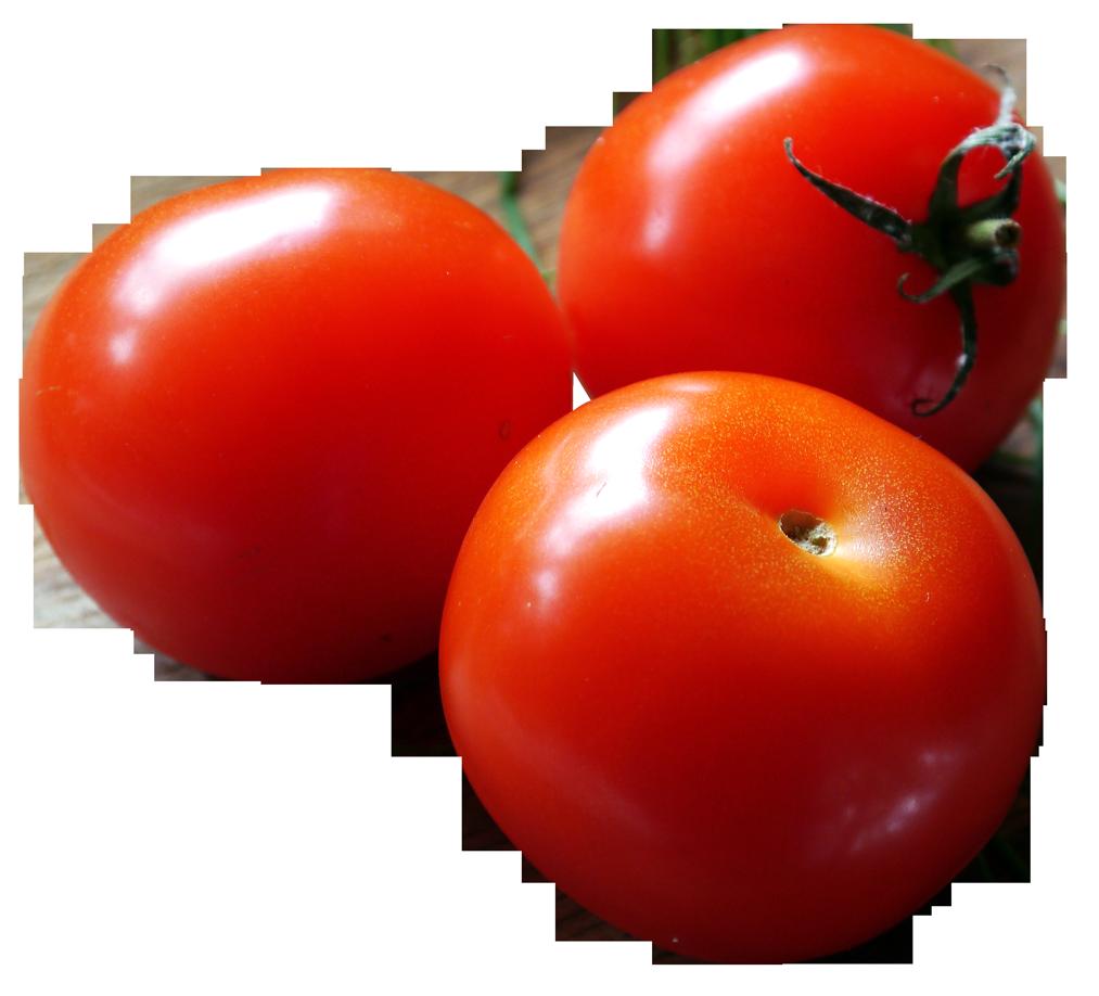 Closeup of Fresh Tomatoes PNG Image Fresh tomatoes