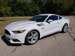 2015 Saleen Mustang Yellow Label For Sale On Usedmustangsforsale