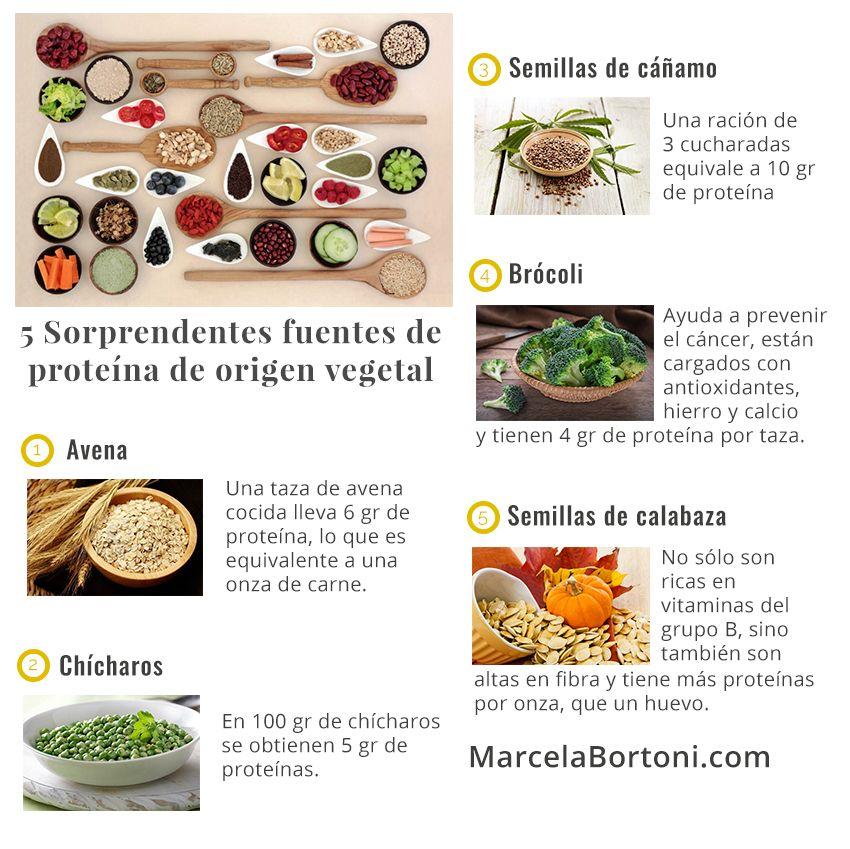Fuentes de proteina origen vegetal