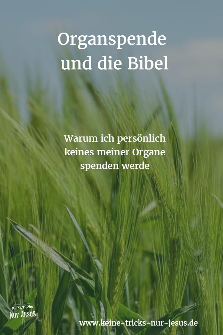 Organspende Bibel