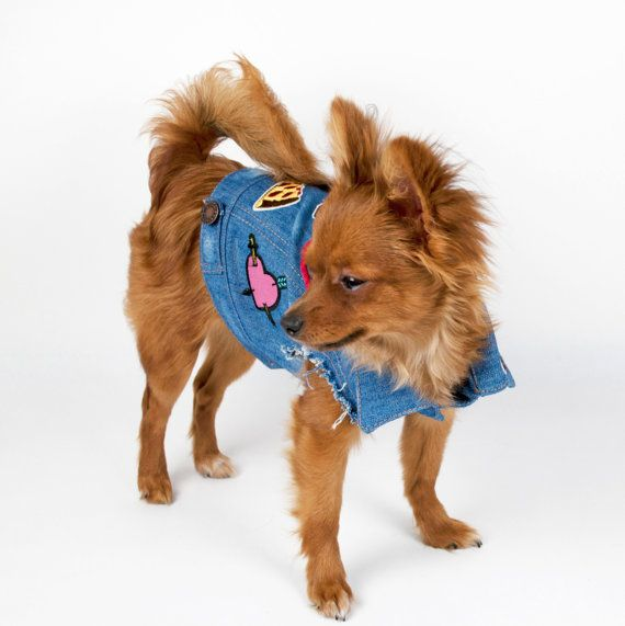 Denim Dog Jacket With Patches Size XS or M by chucksdenim on Etsy