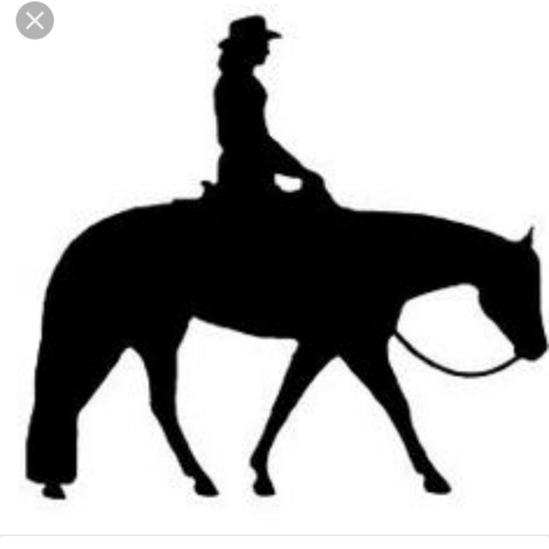 Pleasure Rider Horse Single Switch Plate Black