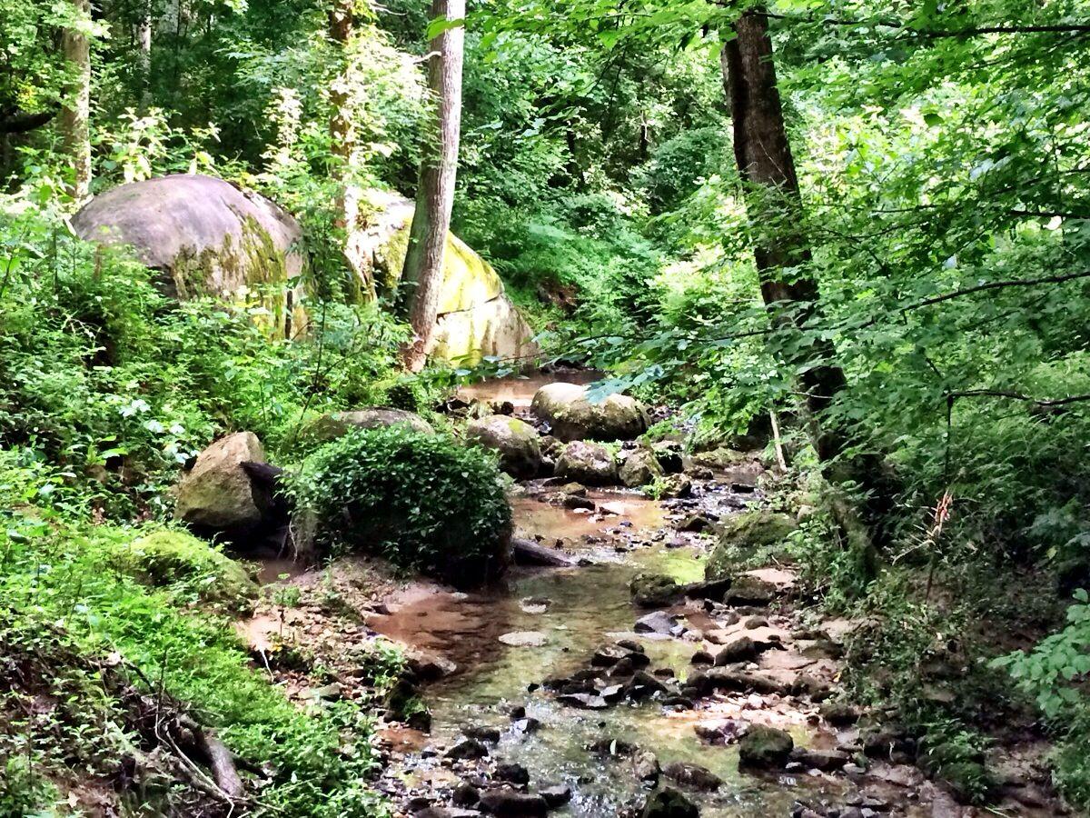 Cascade Springs Nature Preserve - ideas from 365 Atlanta Family
