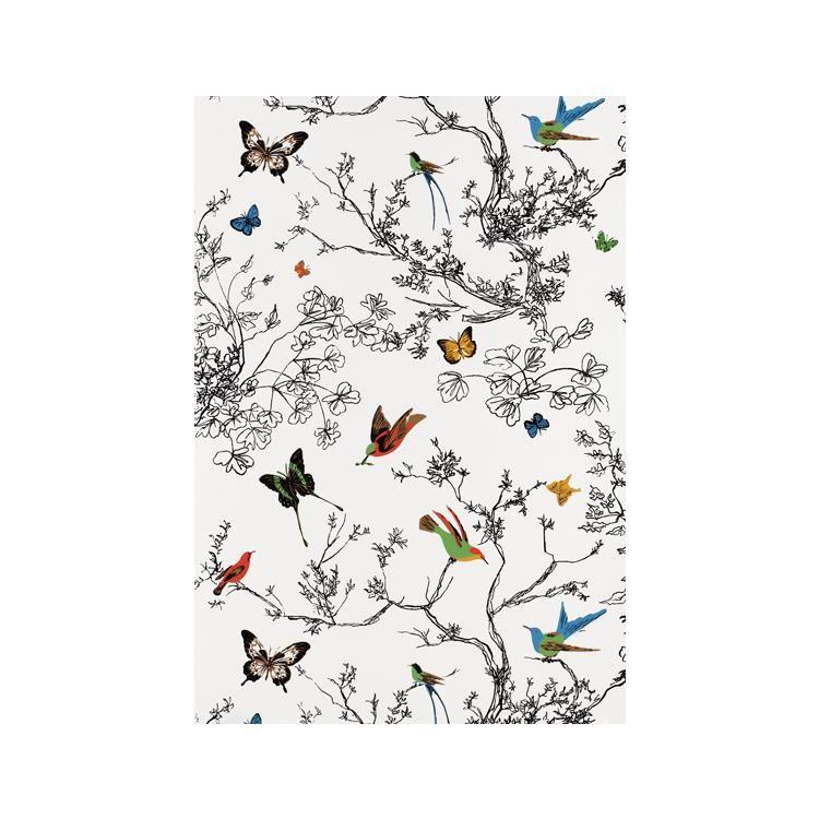 Schumacher2704420 Schumacher Wallpaper Birds And Butterflies