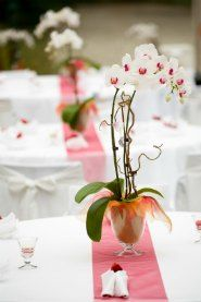 A Potted Orchid Centerpiece Is Great Idea For Easy Wedding Reception Decorations Orchids Are Plentiful And Inexpensive In The Clermont Fl Area
