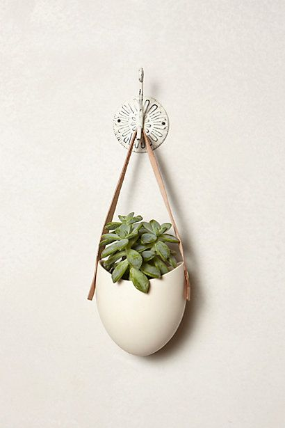 Leather-Latched Wall Planter #anthropologie