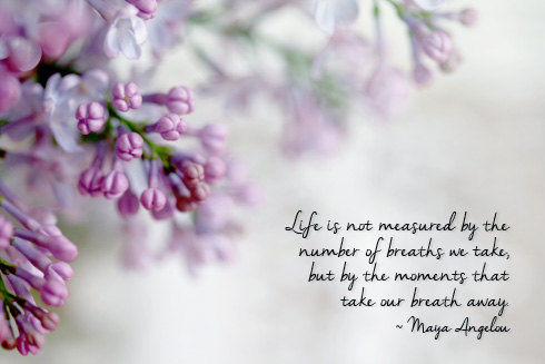 Purple lilac photograph inspirational quote maya angelou quote inspirational quote purple lilac photograph by firstlightphoto 3500 mightylinksfo