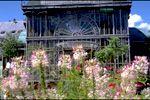 Palmarium Jardin des plantes | 44 Nantes.... | Nantes ville ...